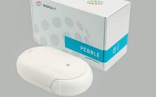pebble-rocks-the-tests-market