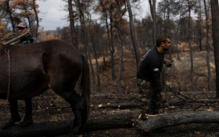 greece-s-fire-ravaged-island-now-racing-to-build-flood-defenses